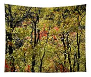 A Splash Of Fall Tapestry