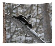 A Squirrel Snow Cone Tapestry