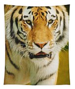 A Tiger Tapestry