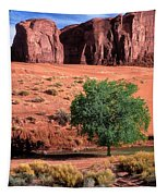 A Touch Of Green At Monument Valley Tapestry