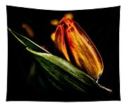 A Tulip With Sheen Tapestry