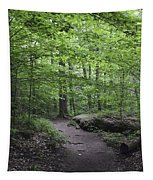A Walk In The Catskills Tapestry