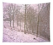 A Walk In The Snow Tapestry