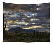 A Winter Sunrise In The Desert  Tapestry