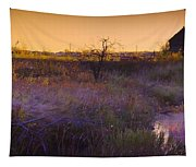 Abandoned Shack At Sunset Near A Creek Tapestry
