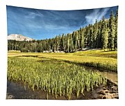 Across The Meadow Tapestry
