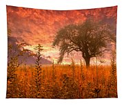 Aflame Tapestry