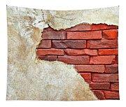 Africa In Bricks Tapestry