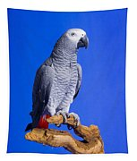 African Grey Parrot Tapestry