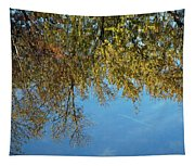 Airplane Reflections Tapestry