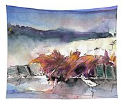 Albufera De Valencia 03 Tapestry