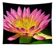 Alive With Color Tapestry