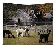 Alpacas In Vermont Tapestry