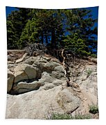 Alpine Pine Hangs On For Life Tapestry