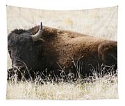 American Bison 2 Tapestry