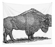 American Buffalo Tapestry
