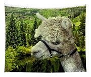 An Alpaca In Vail Tapestry