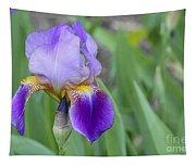 An Iris Blossom Tapestry