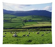 Anascual, Dingle Peninsula, Co Kerry Tapestry