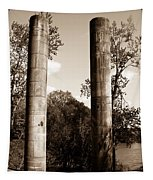 Ancient Columns By The River Tapestry