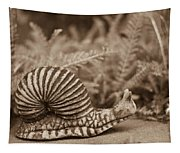 Ancient Snail Tapestry