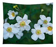 Anemone Cluster 1 Tapestry