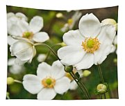 Anemonae Cluster 7 Tapestry