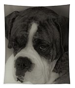 Angelic Boxer Tapestry