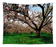 Apple Orchard, Co Armagh, Ireland Tapestry