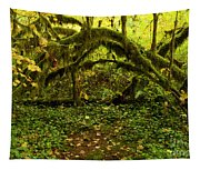 Arches In The Rainforest Tapestry