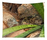 Arizona Rattler Tapestry