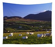 Aughrim Hill, Mourne Mountains, County Tapestry