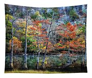 Autumn At Beaver's Bend Tapestry