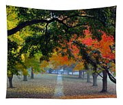 Autumn Canopy Tapestry