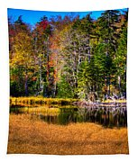 Adirondack Color 52 Tapestry