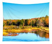 Adirondack Color 54 Tapestry