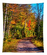 Adirondack Color 56 Tapestry