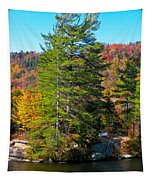 Adirondack Color P8 The White Bench Tapestry