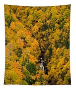 Autumn Colour And Waterfalls, Cape Tapestry