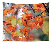 Autumn Day Dream Tapestry