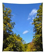 Autumn In Pennsylvania Tapestry
