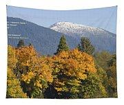 Autumn In The Illinois Valley Tapestry