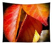 Autumn Leaves II Tapestry