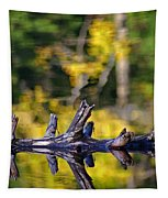 Autumn Mirrors Tapestry