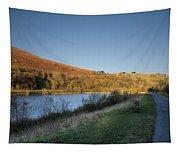 Autumn Pond 4 Tapestry