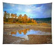 Autumn Puddles Tapestry