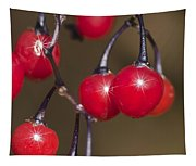 Autumn Red Berry Sparkle Tapestry