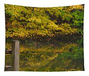 Autumn Reflections_0138 Tapestry
