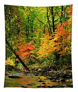Autumn Reflects Tapestry