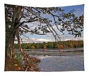 Autumn Shade Tapestry